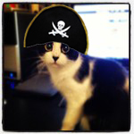Captain Cat's Photo